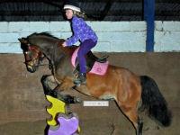 Kidz Club pony riding lesson for children
