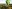 Champagne Balloon Flight for 2 - Stratford