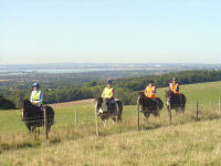 1 Hour Hack in South Downs National Park