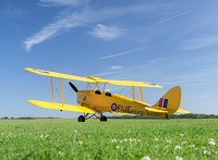 Tiger Moth experience picture