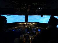 Flight simulator picture